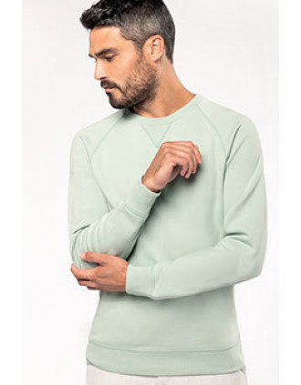 Men's organic cotton crew neck raglan sleeve sweatshirt